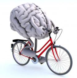 Hersenen in beweging - Fysio Jansen