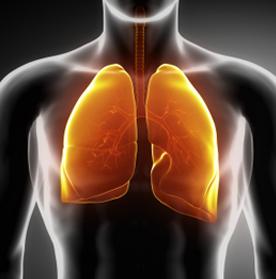 COPD Fysio Jansen