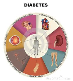 Diabetes mellitus - Fysio Jansen
